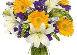 Benchmark Bouquets Cheerful Celebrations, With Vase