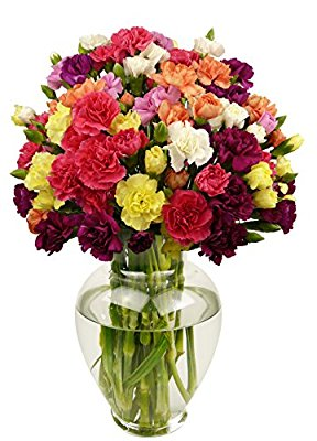 Benchmark Bouquets 20 stem Rainbow Mini Carnations, With Vase