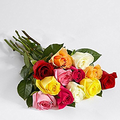 12 Count Multi-Colored One Dozen Vibrant Birthday Roses w/Free Clear Vase